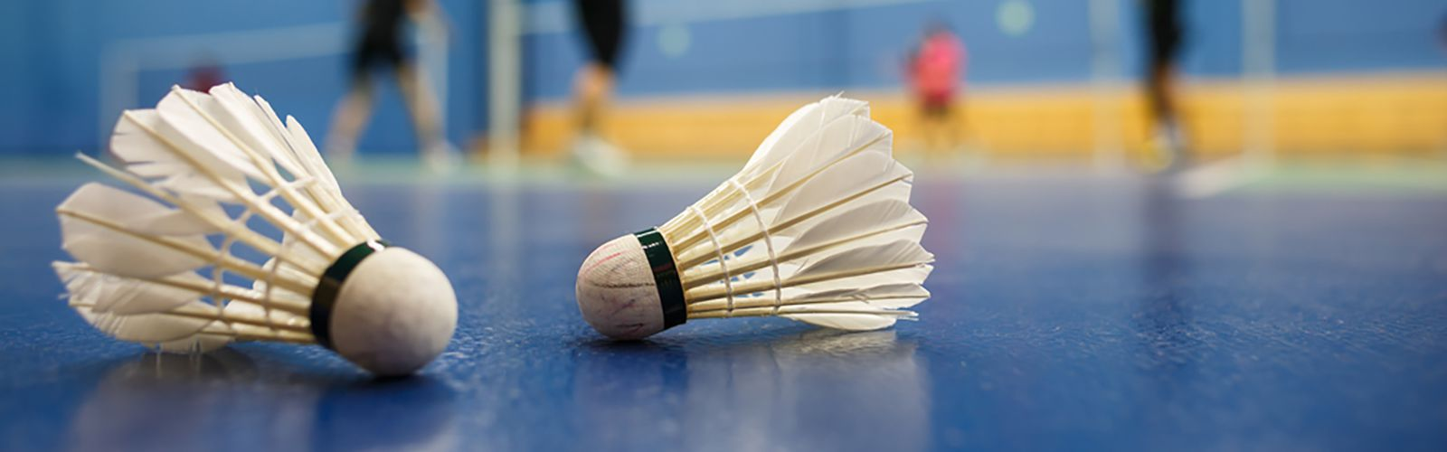header-badminton.jpg